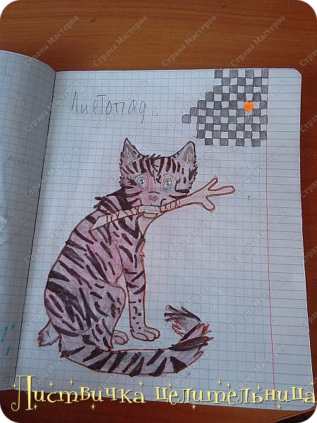 Привет всем! Я на конец то добралась до своих рисунков. Я рисую котов-воителей. Знакомьтесь, это Воробей. фото 5
