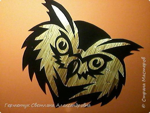 Сова  из соломки на черной  бархатной бумаге фото 6