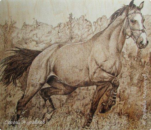 Конь...без пальто.