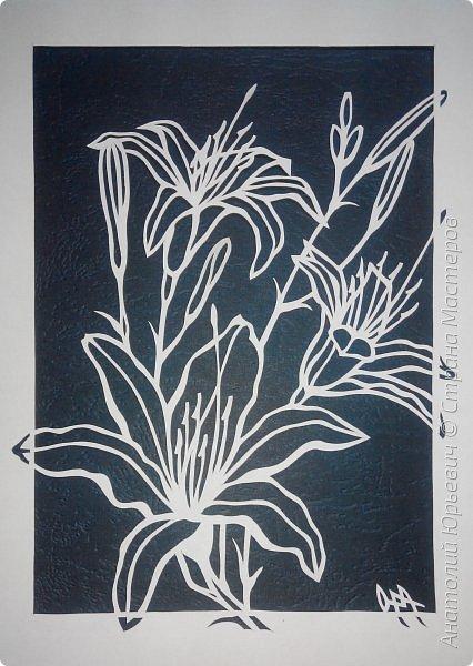 """Всем добрый день! Новая открытка с лилиями. Рисунок для эскиза взят из интернета, изменён и доработан под """"вырезалку"""". Размер 12х16см. фото 4"""