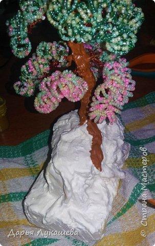 """Бонсай - миниатюрное деревце. Одна из легенд гласит, что некий император в Китае повелел создать миниатюрную империю со всеми деревьями, городами, реками и горами. Для этой цели и были созданы миниатюрные деревья. Свое дерево я назвала """"Надежда"""", потому что, хоть оно и растет на камне, все равно живет, цепляется корнями за все, что возможно, и цветёт.  фото 11"""
