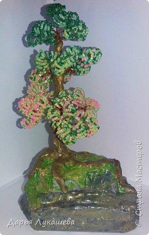 """Бонсай - миниатюрное деревце. Одна из легенд гласит, что некий император в Китае повелел создать миниатюрную империю со всеми деревьями, городами, реками и горами. Для этой цели и были созданы миниатюрные деревья. Свое дерево я назвала """"Надежда"""", потому что, хоть оно и растет на камне, все равно живет, цепляется корнями за все, что возможно, и цветёт.  фото 13"""