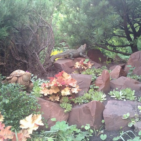 Мой сад сегодня... фото 41