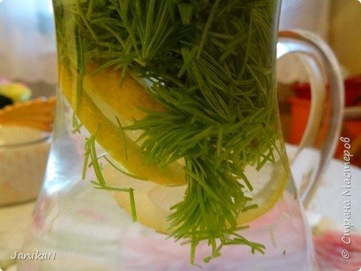 """Весной и ранним летом в лесу можно любоваться ярко зелеными """"шишечками"""" ростками ели. Гуляя в лесу люблю их иногда погрызть просто так за их интересный хвойно -кисловатый вкус, а еще я их собираю и делаю всякую вкуснятину и еще в них очень много витаминов  фото 5"""