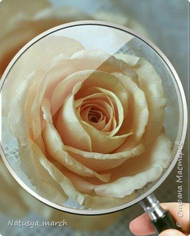 Брошь с розой из фоамирана фото 2