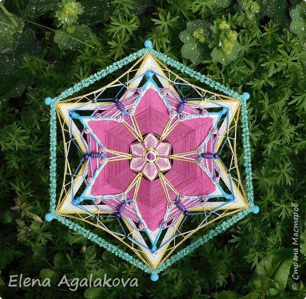 Лето продолжает радовать солнышком и цветами. Моя новая цветущая Мандала с бабочками.   фото 1