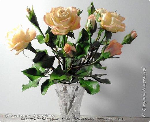 Добрый вечер мастера и мастерицы!!!!Вот такой букет роз слепила для себя любимой,а то сапожник без сапог,в доме не осталось ни одной розы. фото 5
