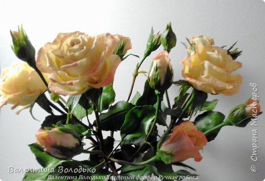 Добрый вечер мастера и мастерицы!!!!Вот такой букет роз слепила для себя любимой,а то сапожник без сапог,в доме не осталось ни одной розы. фото 4