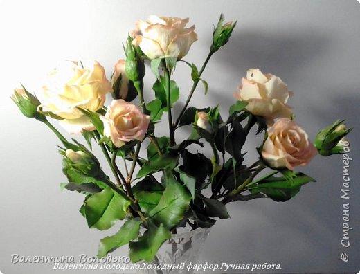 Добрый вечер мастера и мастерицы!!!!Вот такой букет роз слепила для себя любимой,а то сапожник без сапог,в доме не осталось ни одной розы. фото 2