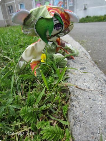Green Test. Новый чубик. фото 1