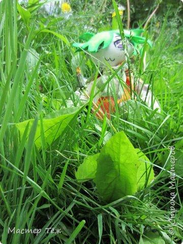 Green Test. Новый чубик. фото 17