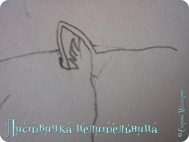 Всем привет! Сегодня я покажу вам, как нарисовать персонажа книги Коты-воители. Её зовут Пестролистая. фото 6