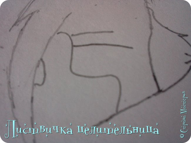 Всем привет! Сегодня я покажу вам, как нарисовать персонажа книги Коты-воители. Её зовут Пестролистая. фото 8