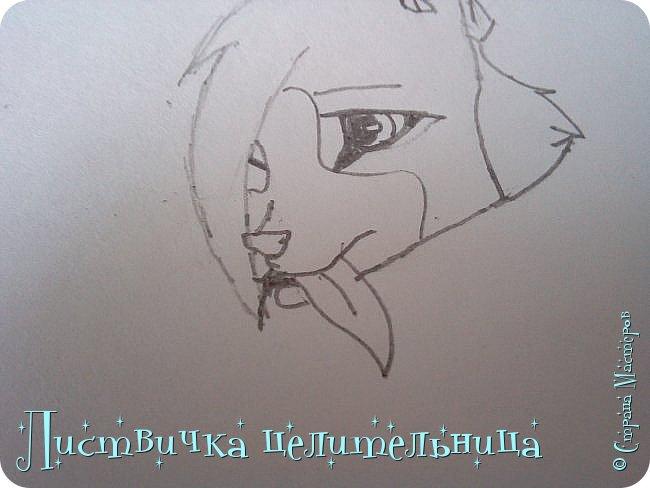 Всем привет! Сегодня я покажу вам, как нарисовать персонажа книги Коты-воители. Её зовут Пестролистая. фото 12