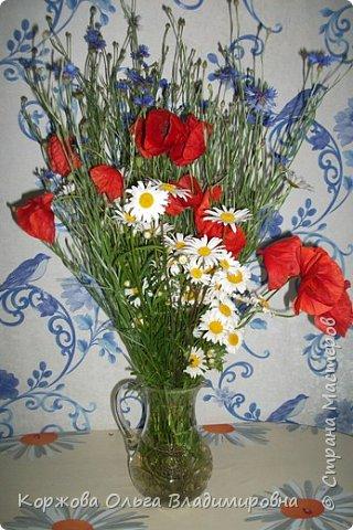 Букет полевых цветов Ставрополья. фото 7