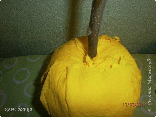 Сегодня у меня сладкое яблочко. Идея от Натали G http://stranamasterov.ru/node/1099130?c=favorite . Только у нее круглое яблочко и зеленое, я сделала желтое и немного вытянутое. Хвостик от настоящей яблони. Конфет ушло примерно 1 кг 200 гр. В высоту примерно 30 см с хвостиком. фото 8