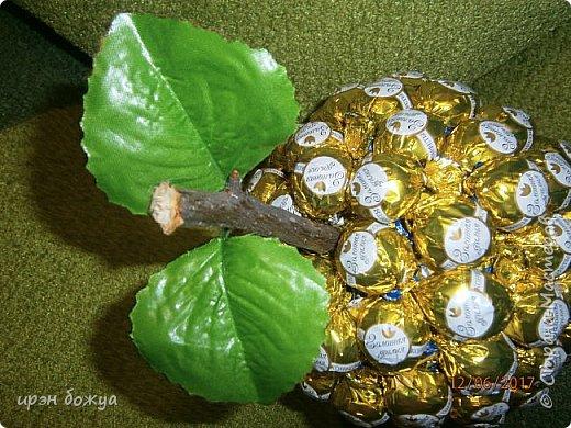 Сегодня у меня сладкое яблочко. Идея от Натали G http://stranamasterov.ru/node/1099130?c=favorite . Только у нее круглое яблочко и зеленое, я сделала желтое и немного вытянутое. Хвостик от настоящей яблони. Конфет ушло примерно 1 кг 200 гр. В высоту примерно 30 см с хвостиком. фото 12