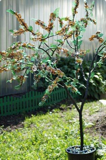 Дерево для украшения сада из пластиковых бутылок фото 1