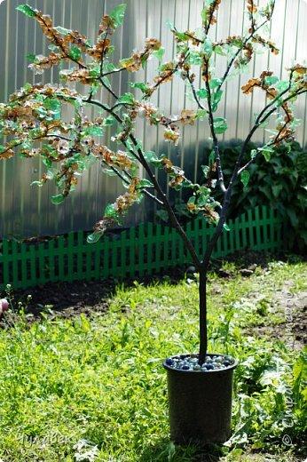 Дерево для украшения сада из пластиковых бутылок фото 13
