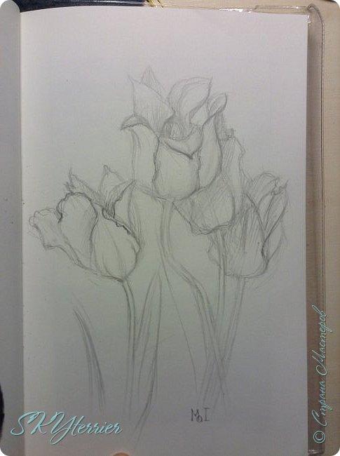 Что-то давно я ничего не выкладывала... Вот немного рисунков, накопившихся за последнее время: Два рисунка на компьютере фото 7