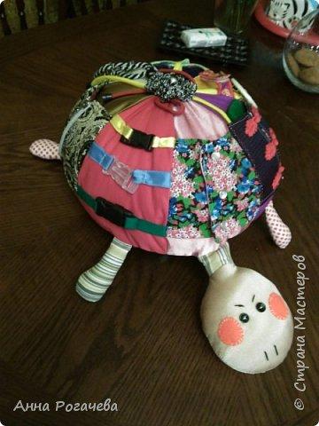 Черепаха Фрося фото 1