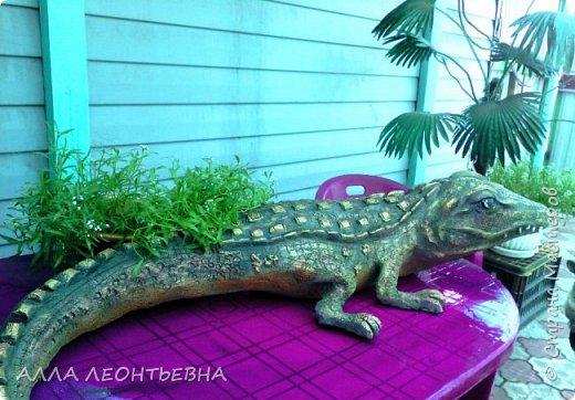 ПОДРАСТАЮТ  ПАЛЬМЫ   \клещевина\В ОГОРОДЕ...и решила я сделать скульптурку побольше---там и поселится ..среди зелени  фото 4