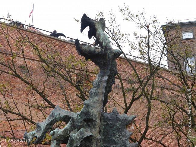 Путешествовать по Польше мы начали в южном направлении: Варшава, Ченстохова, Краков, Величка. фото 99