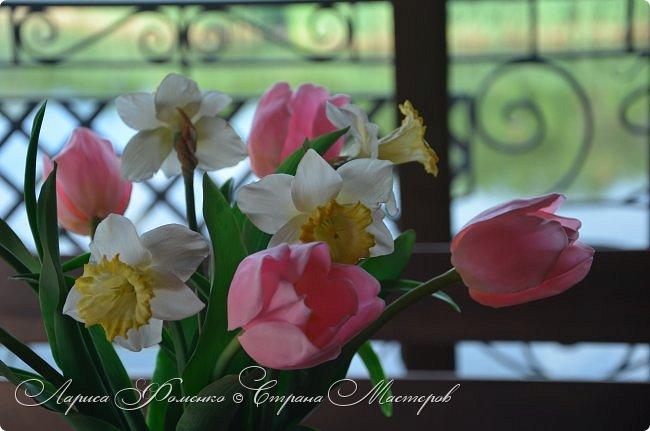 Нежный, весенний букет тюльпанов и нарциссов. фото 4