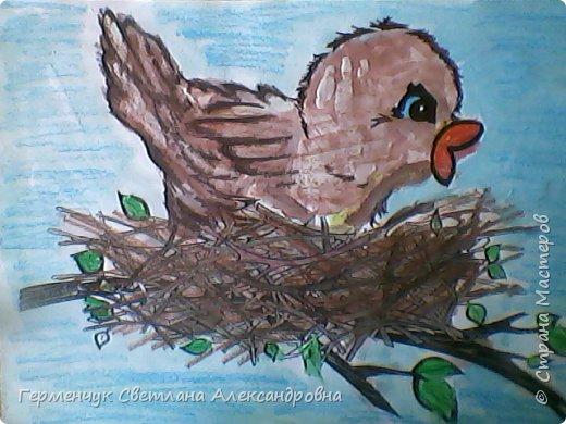 "Раскраски  птицы  ребят  4""В"" класса фото 5"