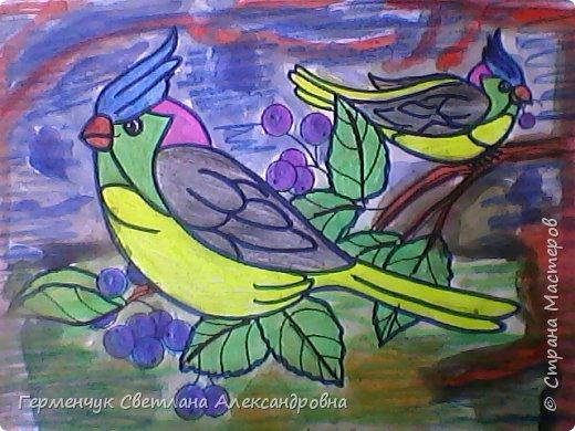 "Раскраски  птицы  ребят  4""В"" класса фото 7"