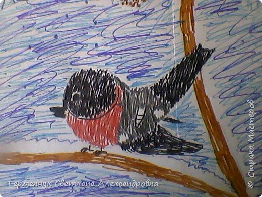 "Раскраски  птицы  ребят  4""В"" класса фото 8"