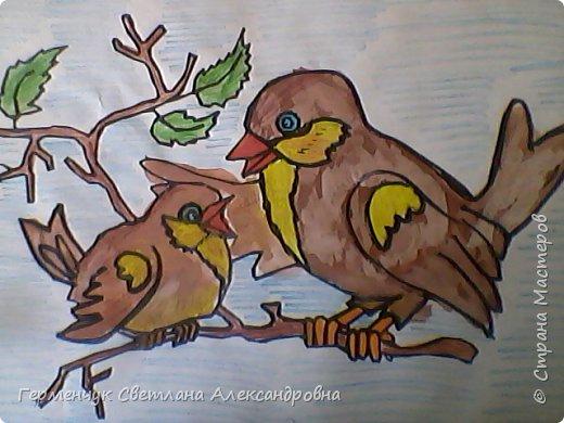 "Раскраски  птицы  ребят  4""В"" класса фото 11"
