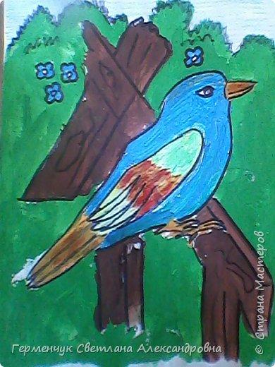"Раскраски  птицы  ребят  4""В"" класса фото 12"