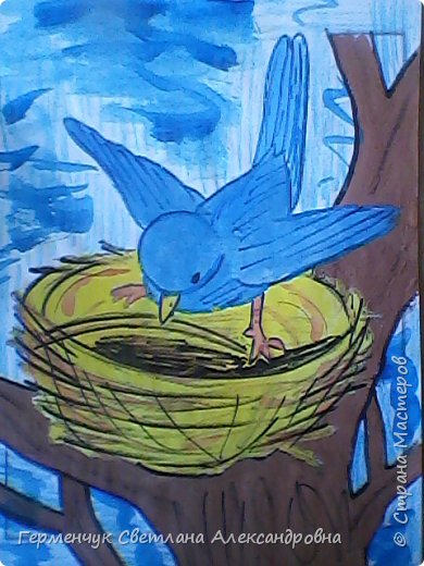 "Раскраски  птицы  ребят  4""В"" класса фото 13"
