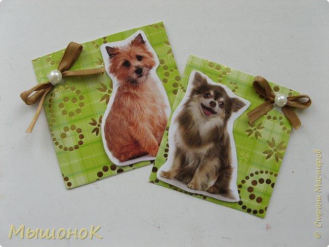 """Всем привет! ))) Давно я не заглядывала!  Сегодня я к вам с двумя небольшими самодельными открыточками, посвященными теме """"Собачки""""  Открыточки небольшие, размер 8х8 ( открытка слева ) и 7,5х7,5 ( открытка справа ). Но не смотря на размер, открытки очень милые))). фото 1"""