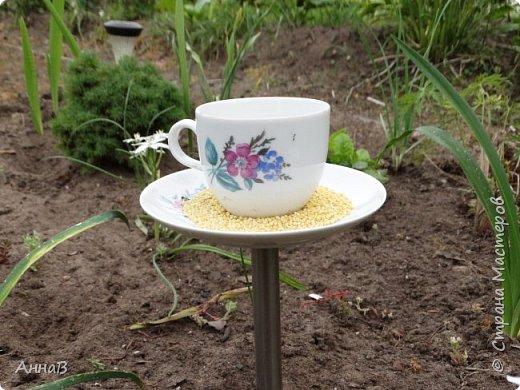 Очередной вариант кормушки из старых чашек, пока не знаю понравиться ли птицам :)  фото 1
