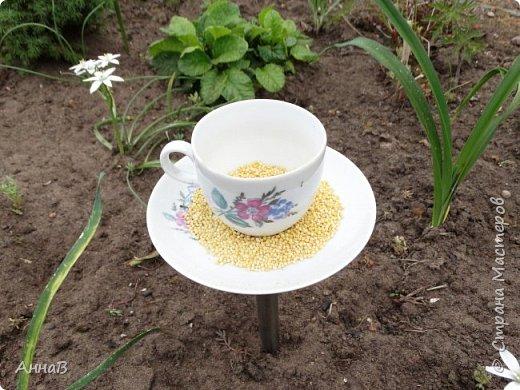 Очередной вариант кормушки из старых чашек, пока не знаю понравиться ли птицам :)  фото 2