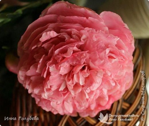 Что может быть из цветов лучше розы?! Только много разных роз в одном букете)  Эту композицию я бы сравнила с девушкой,обладающей нежным и спокойным нравом,но в то же время с сильным,волевым характером,готовым проявится в трудную минуту. Этакая Джейн Эйр ( как мне написали).В композицию вошли розы разных сортов: английская,кустовые и чайные ,а так же цветы и бутоны белой лилии. Диаметр букета - 20 см,высота- 18 см.   фото 11