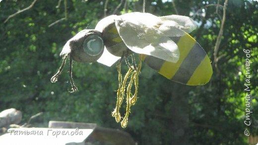 Это спонтанное подобие пчелы. Висит под навесом у входа в наш деревенский дом. Мероприятие не запланированное, случайное. Да, конечно, не жужит и не кусает. Однако, хорошее настроение у гостей создает. Использованы: капроновый чулок, холофайбер, сетка от комаров, проволока по крыльям, джут, краска. Начни повторить, использовала бы плотный чулок черного цвета, получится ярче. фото 4