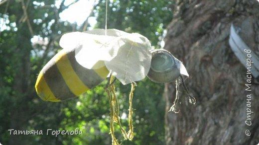 Это спонтанное подобие пчелы. Висит под навесом у входа в наш деревенский дом. Мероприятие не запланированное, случайное. Да, конечно, не жужит и не кусает. Однако, хорошее настроение у гостей создает. Использованы: капроновый чулок, холофайбер, сетка от комаров, проволока по крыльям, джут, краска. Начни повторить, использовала бы плотный чулок черного цвета, получится ярче. фото 2
