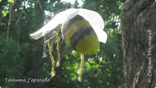Это спонтанное подобие пчелы. Висит под навесом у входа в наш деревенский дом. Мероприятие не запланированное, случайное. Да, конечно, не жужит и не кусает. Однако, хорошее настроение у гостей создает. Использованы: капроновый чулок, холофайбер, сетка от комаров, проволока по крыльям, джут, краска. Начни повторить, использовала бы плотный чулок черного цвета, получится ярче. фото 3