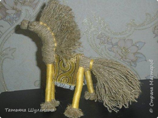 Солнечный конь фото 1