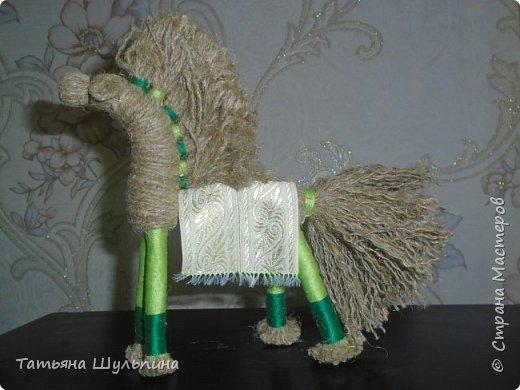Солнечный конь фото 3