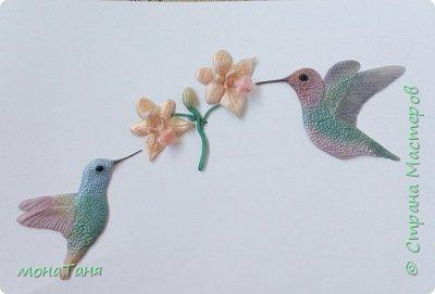 Добрый вечер!!! Я к вам опять с колибри.