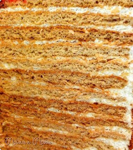 Домашний тортик Медовичок 13 см в высоту и 18 см в ширину))) Вот такой вышины, вот такой ширины, как в песне поется)))) Тонкие медовые коржики, легкий крем и поджаренные кедровые орешки... Почти 2 кг удовольствия  фото 2