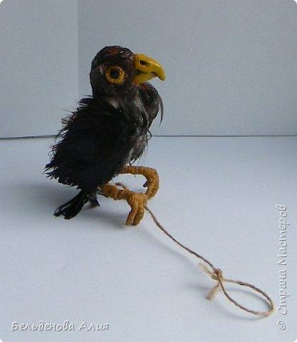 Беркутчи - охотник с экологически чистым оружием  - птицей. Главное - беркута приручить, а  там уже птица сделает всё, что нужно. фото 6