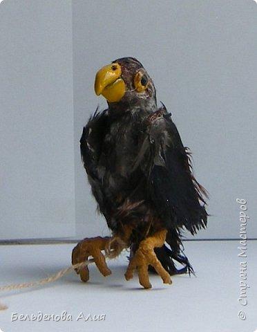 Беркутчи - охотник с экологически чистым оружием  - птицей. Главное - беркута приручить, а  там уже птица сделает всё, что нужно. фото 7