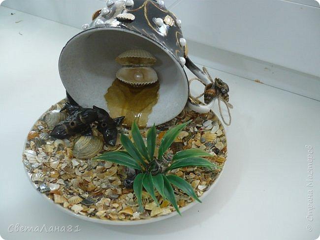 Съездили на Азов, привезли ракушки и еще растение которое после шторма выбрасывает на берег, если не ошибаюсь называется морской черт. фото 2