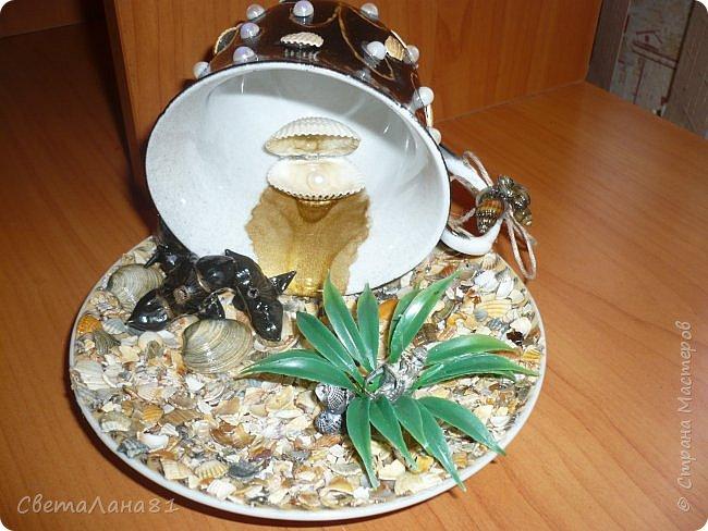 Съездили на Азов, привезли ракушки и еще растение которое после шторма выбрасывает на берег, если не ошибаюсь называется морской черт. фото 1