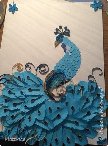 Синяя птица -2 фото 1
